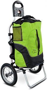 Geko trolley bici verde