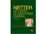 Netter. Atlante di anatomia umana